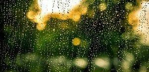Rain Car Wash
